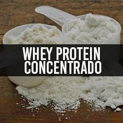 Whey Protein Concentrado
