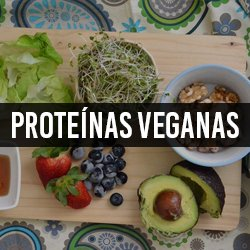 Proteínas Veganas (Vegetais)
